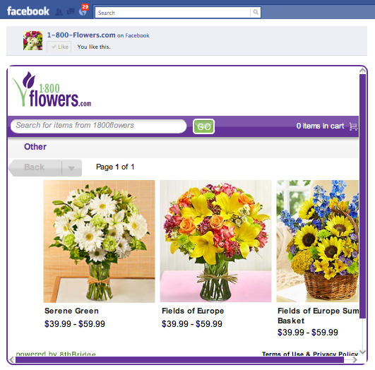 A Short History of Top e-commerce and f-commerce (Facebook) Shopping Statistics: Where The Social Commerce Customer Has Been and Where We Social Shopping is Going…