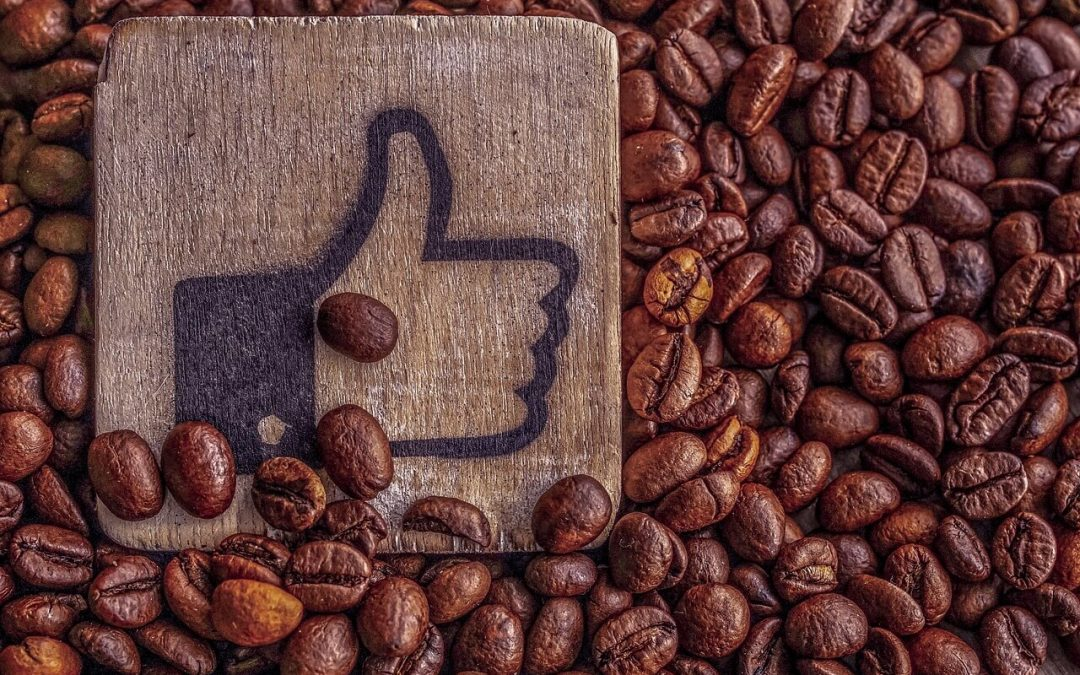 """An Excerpt from """"Like My Stuff"""" Chapter 5: Social Marketing with Facebook Plug-ins"""