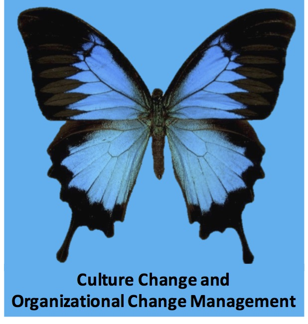 "Is Organizational Change Management Just the ""Fluffy Stuff"" or Is There Real Business Value?"